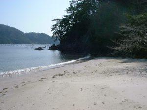 九九鳴き浜
